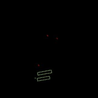 SpankerGenua